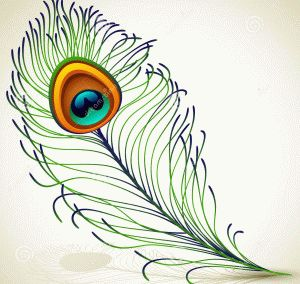 http://poleradosti.ru/www.dreamstime.com/stock-images-peacock-feather-image26151734